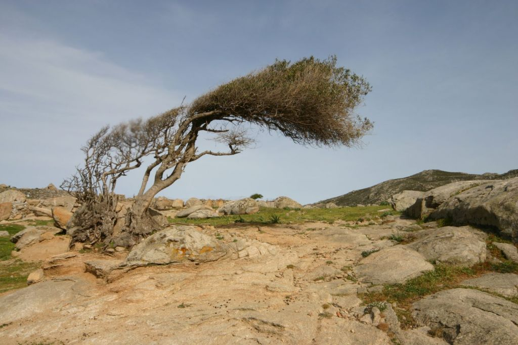 Καιρός: Έφτασε τα 140 χιλιόμετρα την ώρα η ταχύτητα του ανέμου στην Τήνο