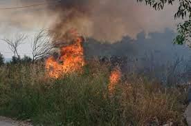 Κρήτη: Φωτιά σε χορτολιβαδική έκταση κοντά στο πεδίο βολής Γουβών στην Κρήτη