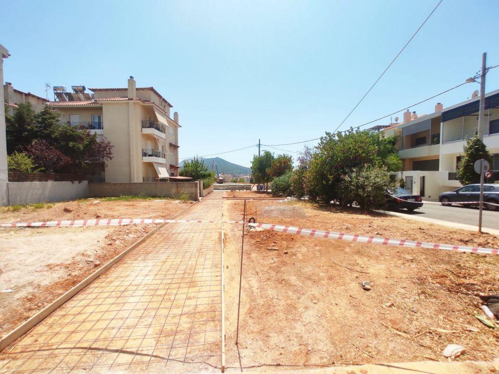 Η Παλλήνη πρασινίζει. Τι γίνεται με τους πυλώνες.