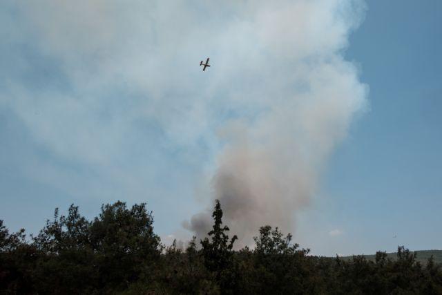 Φωτιά στην Εύβοια: Υπό έλεγχο το πύρινο μέτωπο – Απειλήθηκαν σπίτια