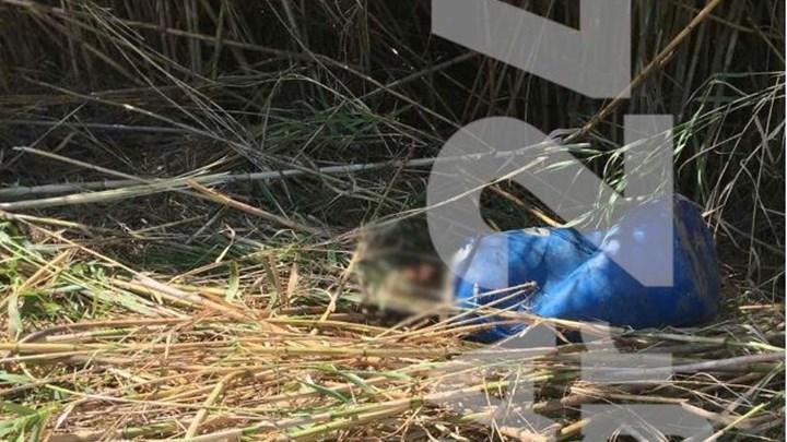 Κρήτη: Σε νεαρό άνδρα ανήκει το πτώμα στο βαρέλι – Δολοφονία δείχνουν τα πρώτα στοιχεία
