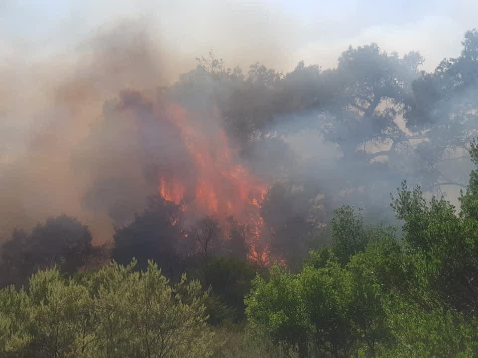 Μεγάλη δασική πυρκαγιά στον Έβρο – Εκκενώνεται η Λευκίμη