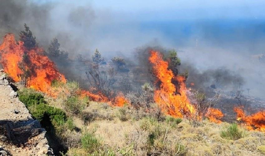 Χίος: Οι πρώτες εικόνες από τη μεγάλη φωτιά – Δείτε απίστευτα πλάνα μέσα από καναντέρ