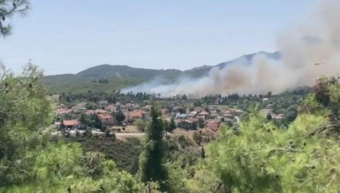 Φωτιά στην Σταμάτα Αττικής: Μάχη να μην φτάσουν οι φλόγες στα σπίτια