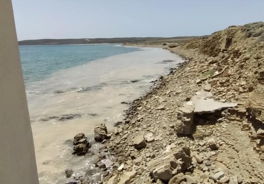 Θαλάσσια βλέννα στη Λήμνο: Δεν εμπνέει ανησυχία το φαινόμενο – Δεν είναι τοξική