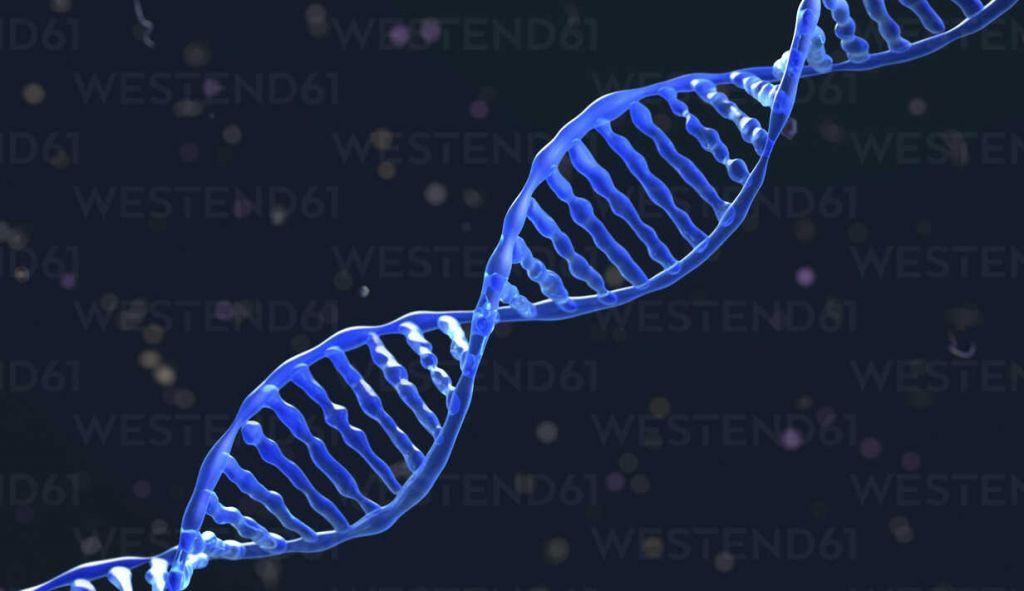 Μυστηριώδη μόρια DNA από το υπέδαφος αφήνουν τους βιολόγους σαστισμένους