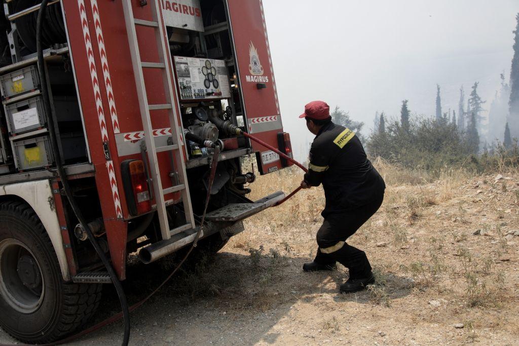 Κορινθία: Πυρκαγιά στο Καλέντζι