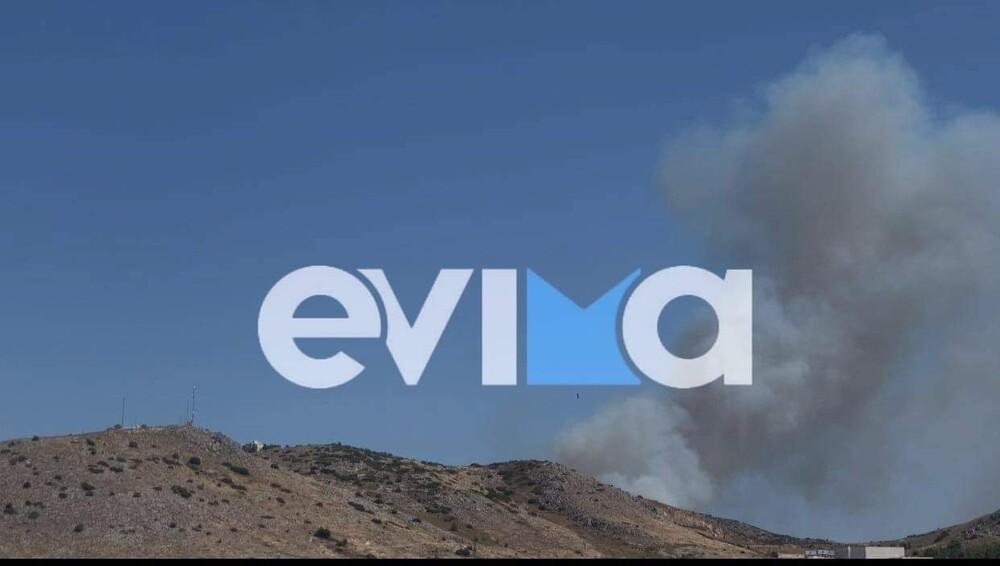 Χαλκίδα: Φωτιά κοντά σε κατοικημένη περιοχή – Συναγερμός στην πυροσβεστική