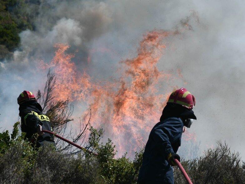 Βόνιτσα – Καλύτερη εικόνα παρουσιάζει η φωτιά στην περιοχή Θυρίου