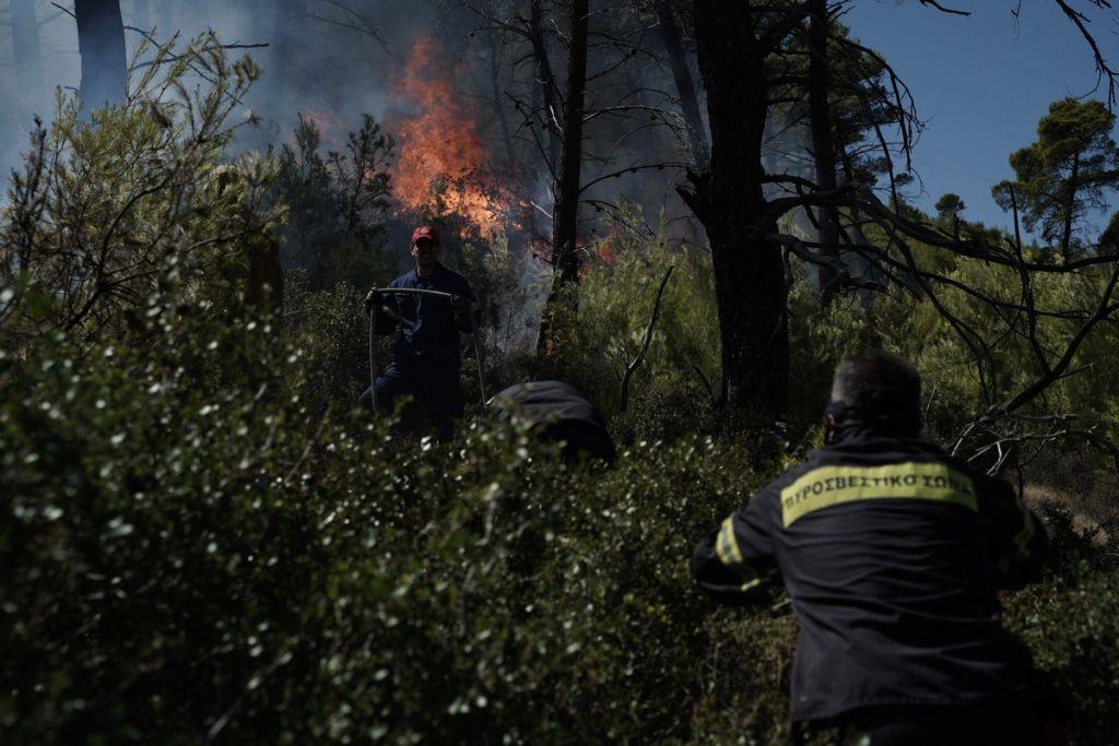 Ηράκλειο: Φωτιά κοντά στο χωριό Βόνη