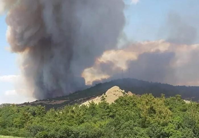 Έβρος: Συνεχίζεται η μάχη με τις φλόγες – Επέστρεψαν οι κάτοικοι στη Λευκίμμη