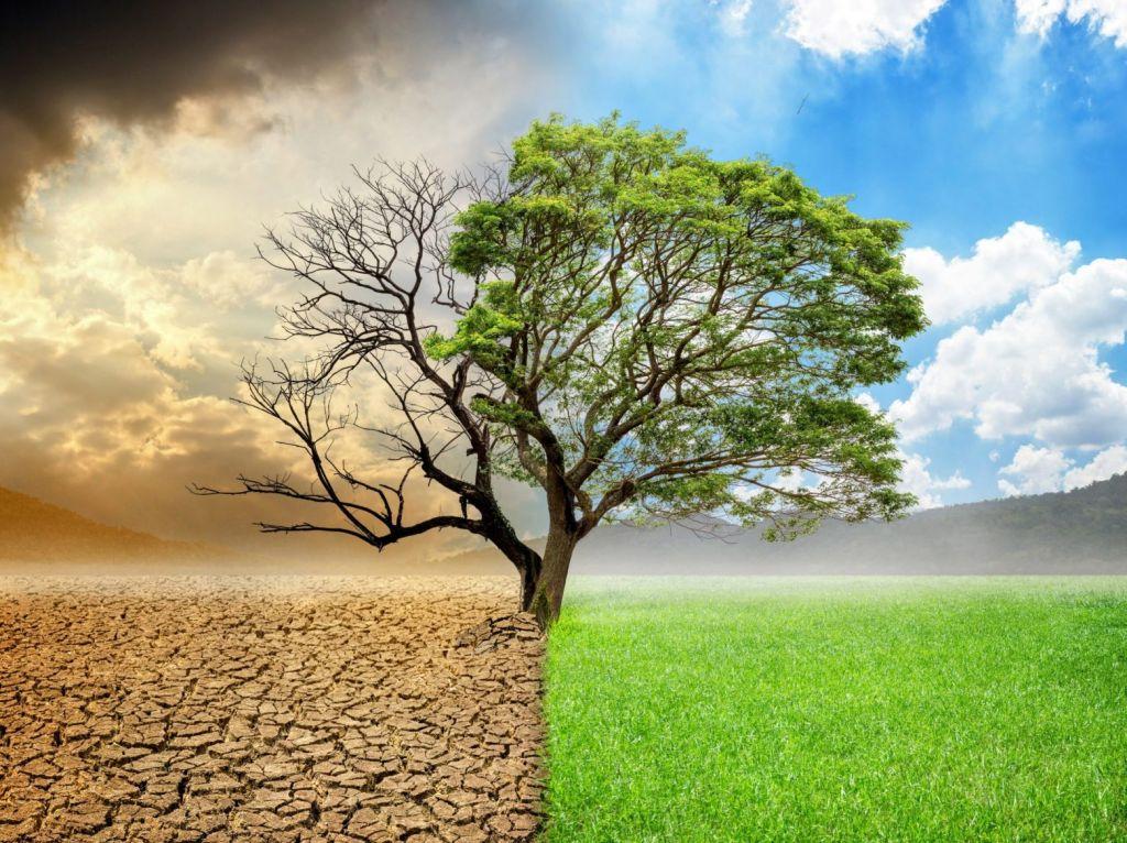 Κλίμα: Τα ζωτικά σημεία της Γης εξασθενούν – Η προειδοποίηση των επιστημόνων