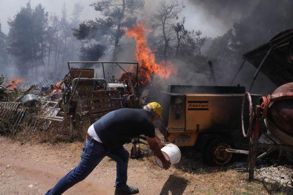 Φωτιά στη Σταμάτα: Ελεύθεροι οι προσαχθέντες, αναζητείται ένας μελισσοκόμος