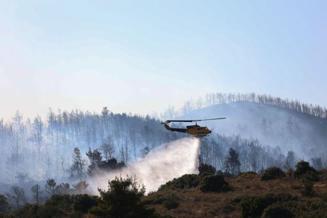 Βίλια – Μαίνεται το πύρινο μέτωπο – Μάχη της Πυροσβεστικής με τους ανέμους και τις αναζωπυρώσεις