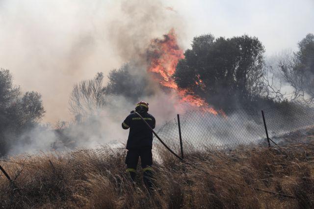 Κως – Υπό έλεγχο το μέτωπο στην περιοχή Παραδείσι – Οι φλόγες πλησίασαν τον οικισμό