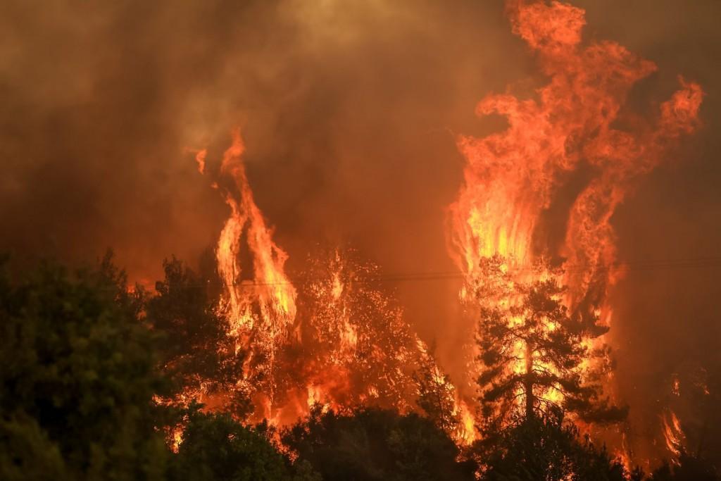 Φθιώτιδα – Μάχη με τις φλόγες στο Λογγίτσι – Απειλούνται σπίτια