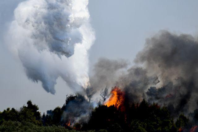 Ζάκυνθος – Προφυλακίστηκε 55χρονος για εμπρησμούς – Ομολόγησε τις φωτιές στο Αργάσι