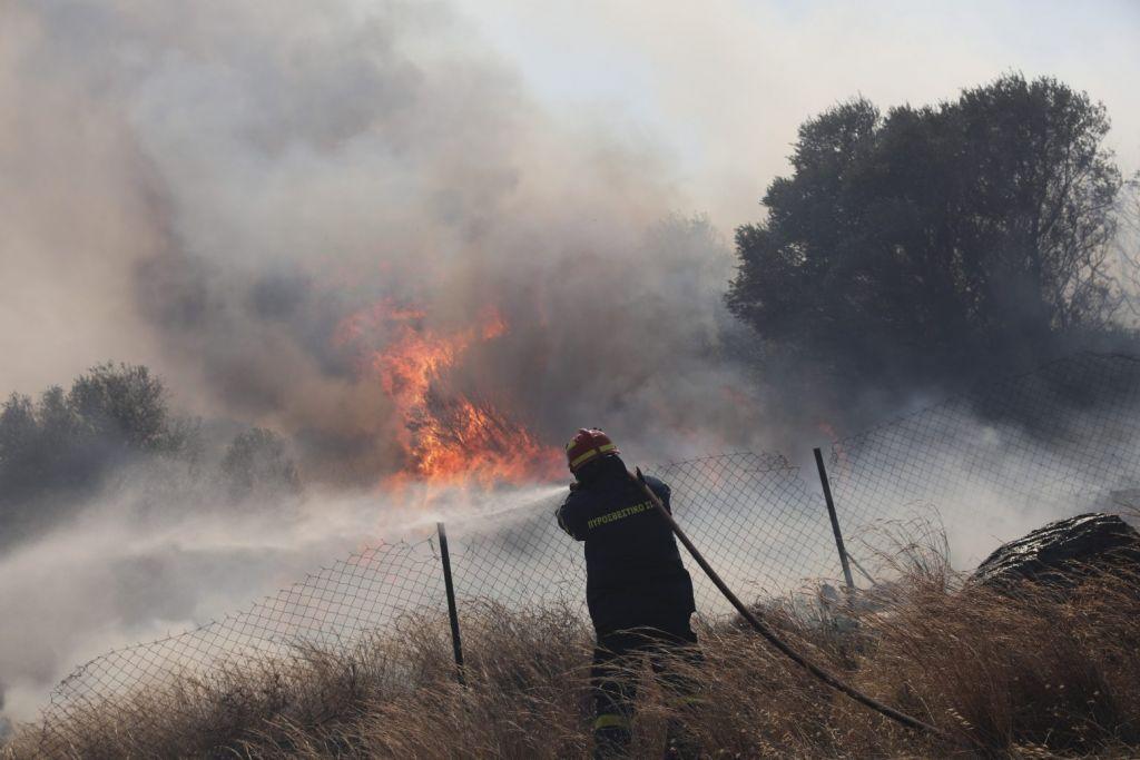 Πάνω από 94.000 στρέμματα η καμένη γη στα Βίλια – Πολωνοί και Ρουμάνοι παραμένουν στην Ελλάδα για τις φωτιές