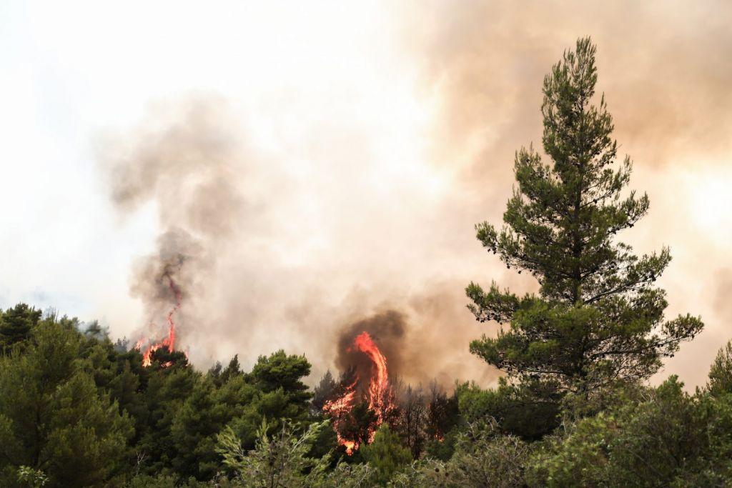 Απαγόρευση κυκλοφορίας στα δάση με Πράξη Νομοθετικού Περιεχομένου