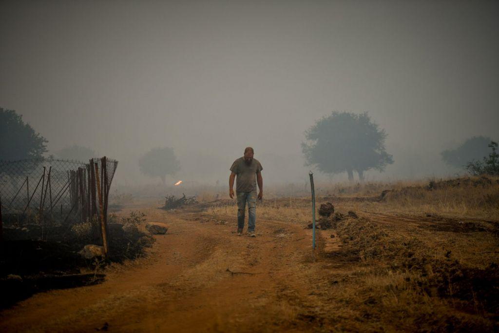 Πυρκαγιές: Δεκάδες χιλιάδες υπογραφές σε έκκληση της WWF για την πρόληψη