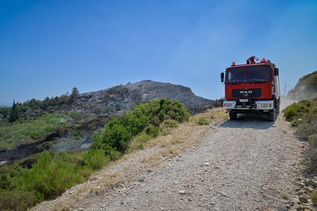 Εκκενώνεται η Ελαία Φωκίδας λόγω δασικής πυρκαγιάς – Μήνυμα 112