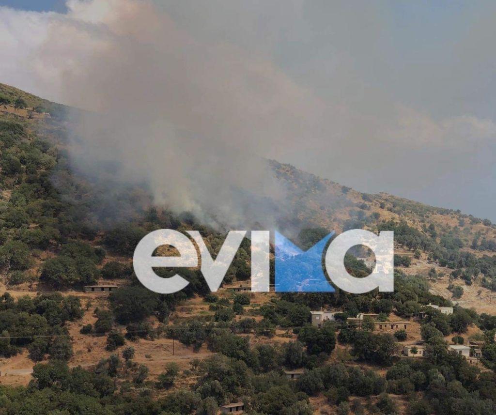 Εύβοια – Φωτιά στο Θύμι Καρύστου – Πνέουν ισχυροί άνεμοι