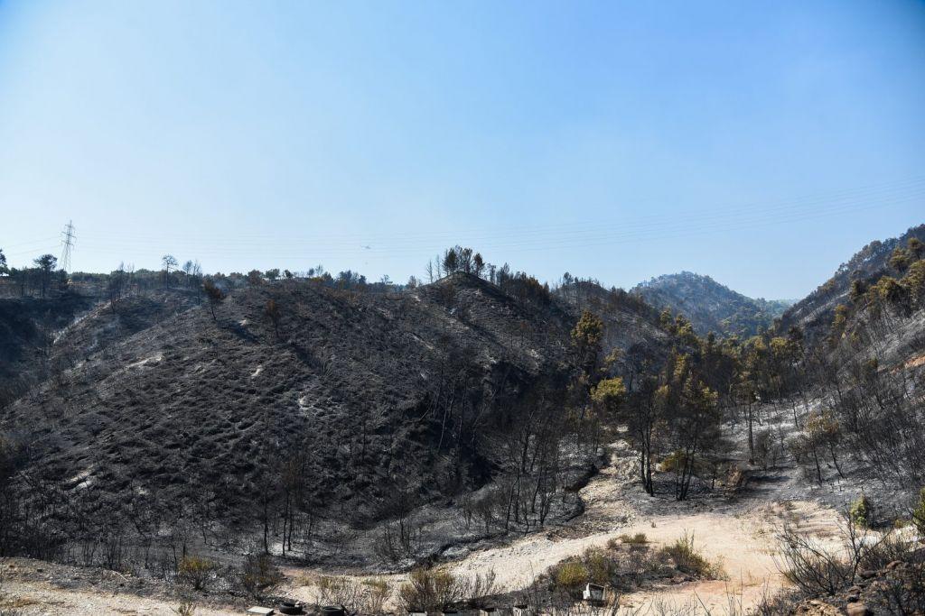 Φωτιά στην Αχαΐα – Πάνω από τρεις χιλιάδες στρέμματα καμένα σύμφωνα με το Meteo
