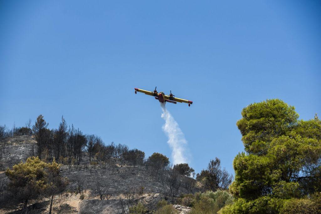 Χαρδαλιάς – 116 φωτιές το τελευταίο 48ωρο – Ποια είναι η κατάσταση στα πύρινα μέτωπα
