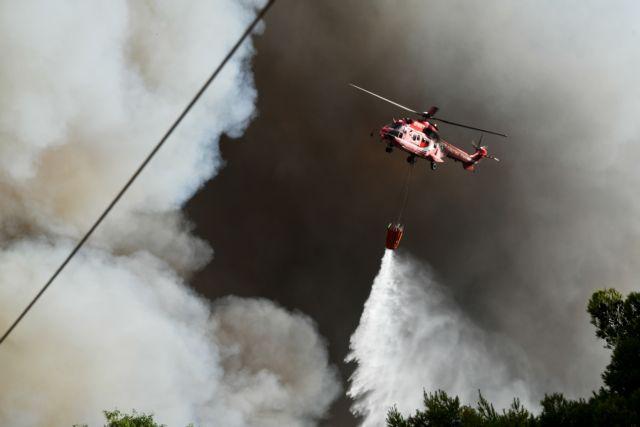 Φωτιά στις Αφίδνες – Έκκληση για ενίσχυση δυνάμεων – «Οι πυροσβέστες είναι άνθρωποι, όχι μηχανές»