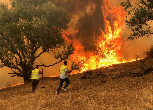 Κοροναϊός – Πώς τα αυξημένα μικροσωματίδια από τις πυρκαγιές αυξάνουν την πιθανότητα βαριάς νόσησης