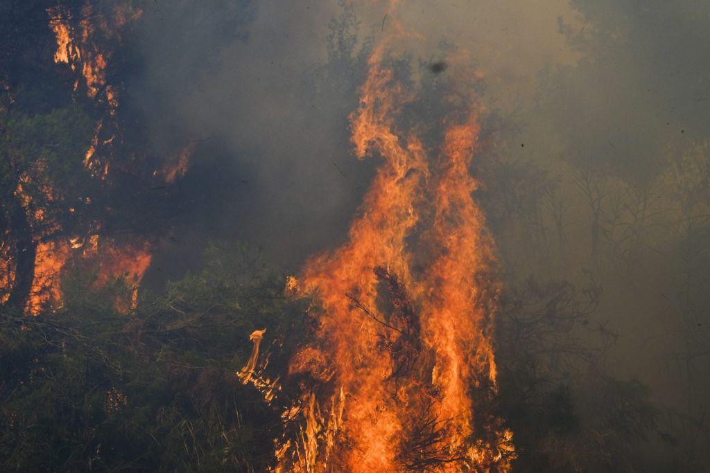 Μπόκαρης για φωτιές – Χάθηκαν πνεύμονες πρασίνου – Μεγάλες επιπτώσεις σε κλίμα, οικονομία