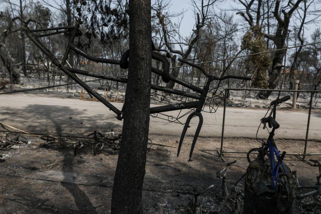 Εύβοια – «Το 90% της παραγωγικής δραστηριότητας δεν υπάρχει» λόγω της πυρκαγιάς
