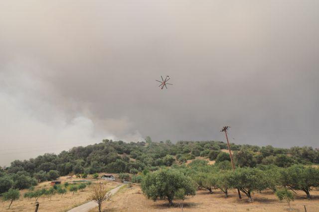 Σε κατάσταση εκτάκτου ανάγκης η Λίμνη Εύβοιας – Στα 100 μέτρα από τις Κεχριές οι φλόγες