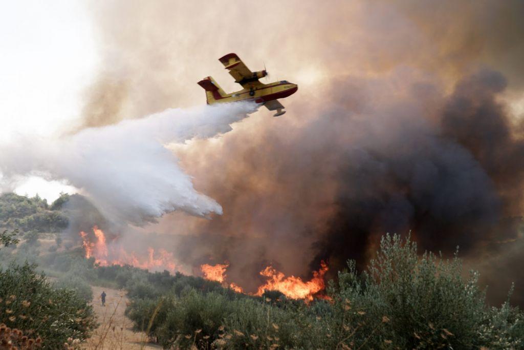 Φωτιά στην Ηλεία – Εντοπίστηκε ύποπτος για εμπρησμό