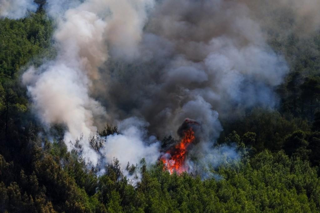 Κως – Πυρκαγιά εκδηλώθηκε στην περιοχή Παραδείσι