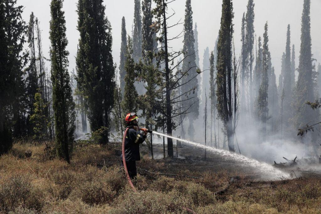 Θεσσαλονίκη: Φωτιές σε Ευκαρπία και Λητή