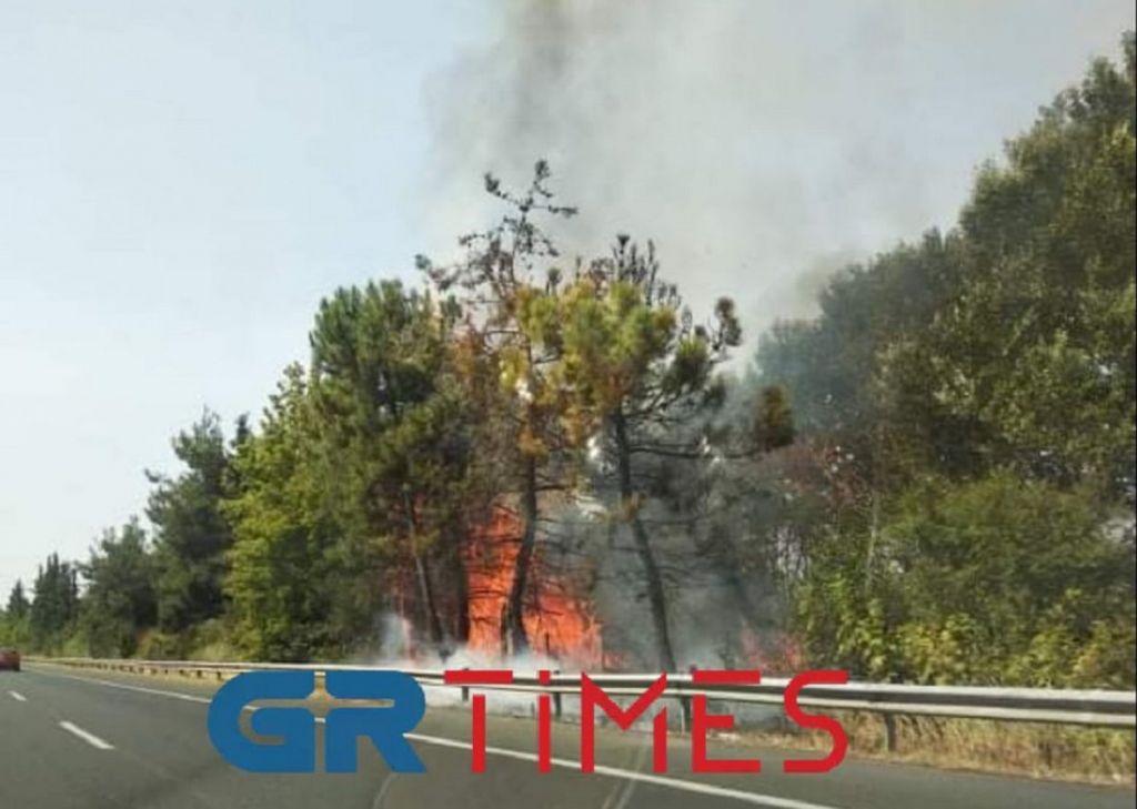 Φωτιά – Φλόγες δίπλα στην εθνική οδό Αθήνας – Θεσσαλονίκης