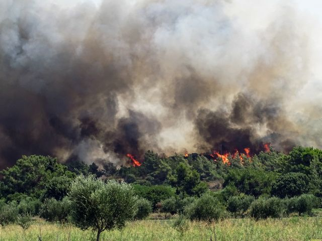 Ρόδος – Σε ύφεση η φωτιά – Φόβοι από τις αναζωπυρώσεις