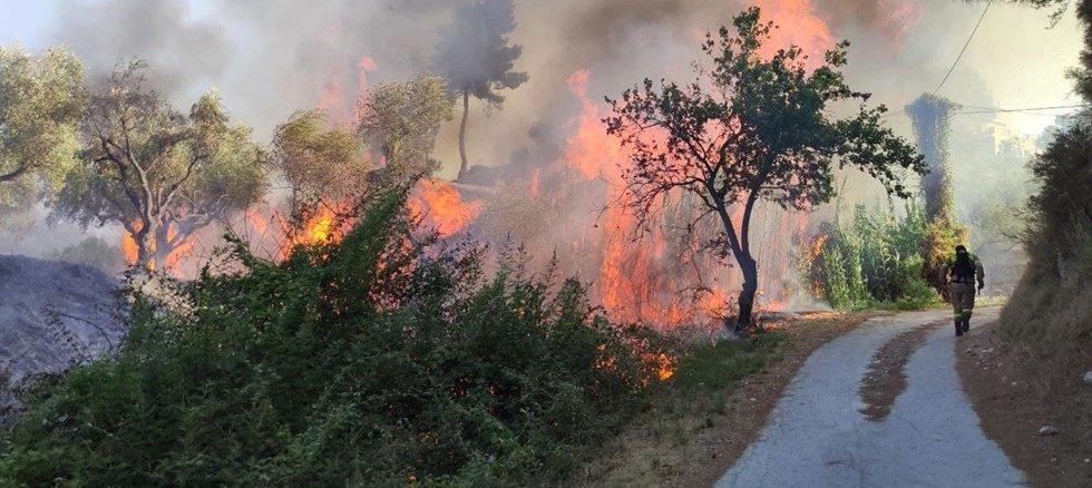 Φωτιά στη Ζάκυνθο: Προσήχθη ύποπτος για την πυρκαγιά στο Αργάσι – Στις αυλές των σπιτιών οι φλόγες