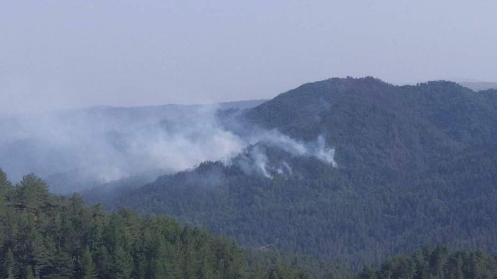 Ανεξέλεγκτη η φωτιά στη Φωκίδα – Στα 6 χλμ. το μέτωπο στα χωριά Ελαία και Καλλιθέα που εκκενώθηκαν