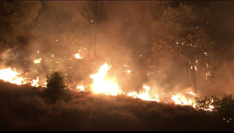 ΓΓΠΠ – Πολύ υψηλός κίνδυνος πυρκαγιάς τη Δευτέρα σε πολλές περιοχές της χώρας