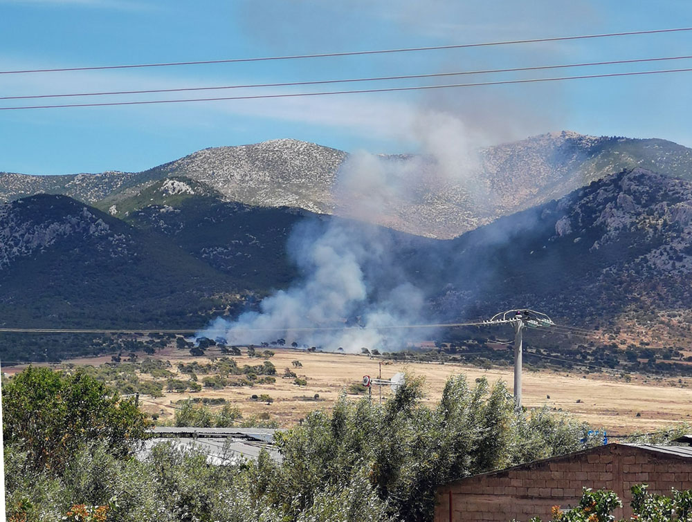 Υψηλός κίνδυνος πυρκαγιάς τη Δεύτερα σε πέντε περιοχές – Σε επιφυλακή όλες οι δυνάμεις της Πυροσβεστικής