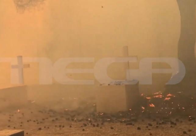 Στους βασιλικούς τάφους στο Τατόι οι φλόγες – Βίντεο ντοκουμέντο