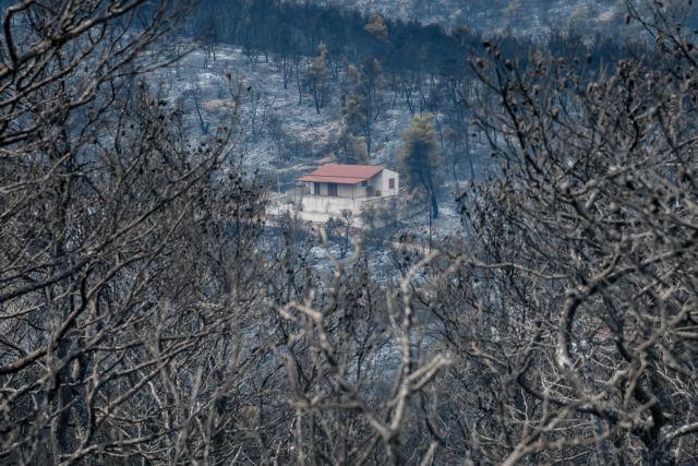 Χρυσοχοΐδης: Οριοθετήθηκε στο μεγαλύτερο μέρος της η φωτιά στα Βίλια – Οι συνθήκες είναι αντίξοες
