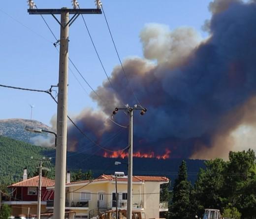 Βίλια – Νέα φωτιά σε εξέλιξη – Μεγάλη κινητοποίηση της Πυροσβεστικής