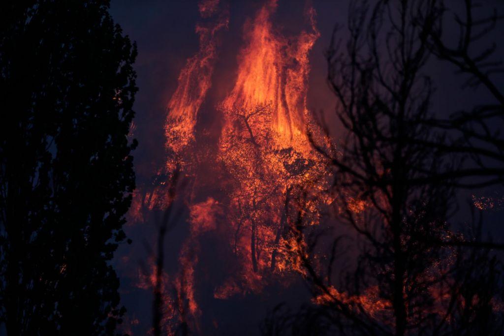 Φωτιά στη Βαρυμπόμπη – Εκκενώνεται μέρος του Κρυονερίου – Πλησιάζουν επικίνδυνα οι φλόγες
