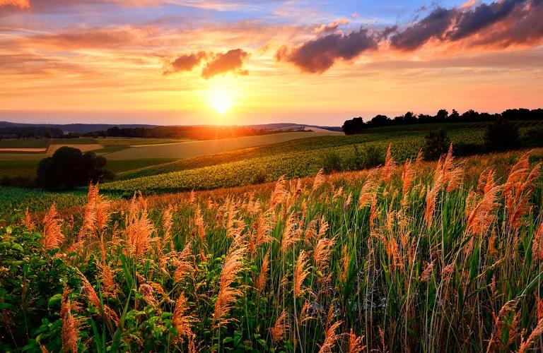 Συμφωνία για την αγροτική μεταρρύθμιση της ΕΕ