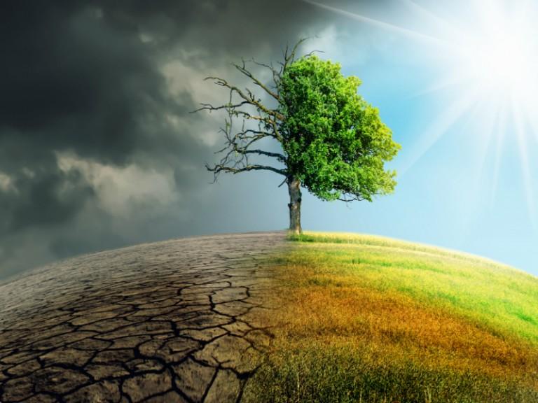Έρευνα – Αποκαλύπτει την έλλειψη κατανόησης της κλιματικής πραγματικότητας
