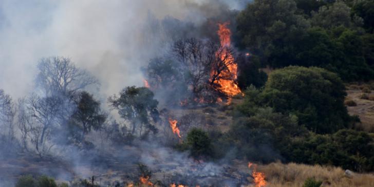Φωτιά στην περιοχή Ανω Βουνά στις Μυκήνες