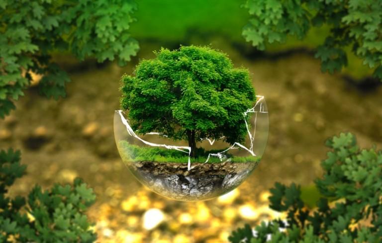 Σ. Γιουρέλης – «Το υπερταμείο έχει βάλει σαν βασικό του στόχο τη μείωση του αποτυπώματος του άνθρακα»